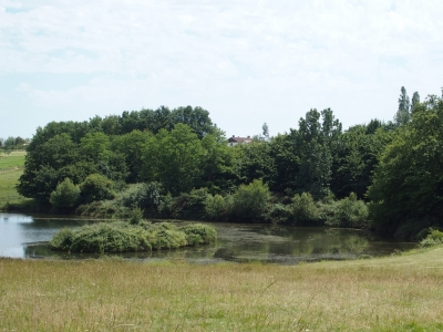 Property with 21ha and lake